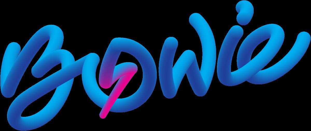 Bowie wordmark